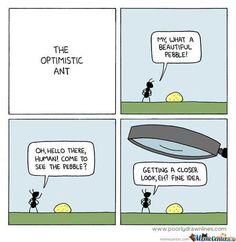 Image result for optimism memes