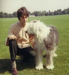 Paul McCartney from the Beatles poses with his Old English Sheepdog Martha on Primrose Hill in London, summer Get premium, high resolution news photos at Getty Images Foto Beatles, Les Beatles, Beatles Songs, Beatles Photos, Paul Mccartney, John Lennon, Martha My Dear, Old English Sheepdog Puppy, I Am The Walrus