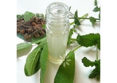 Salvia, Celery, Cosmos, Glass Vase, Vegetables, Plants, Decor, Alcohol, Decoration