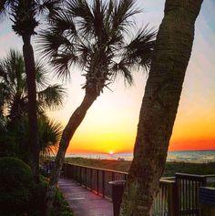 Sunrise | Myrtle Beach | South Carolina | Photo via Instagram by @courtneyrf128
