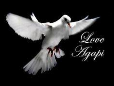 LOVE - AGAPI - ΑΓΑΠΗ