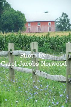 One of my favorite barns in Lebanon County, Pennsylvania.  Photo by Carol Jacobs Norwood.