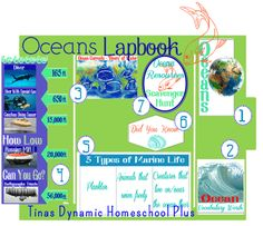 Free Ocean Lapbook   Tina's Dynamic Homeschool Plus