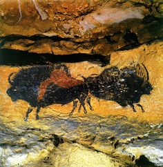 Lascaux Cave Paintings Next time I'm in France, I swear I am going here!!!!!!!!!