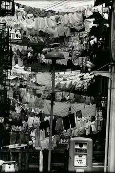 Erwin Elliott, New Jersey 1954