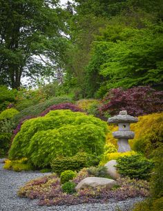 """The Seattle Times: John Albers' garden of rooms is designed to thrive, survive. Three Asian-inspired island gardens (""""Life,"""" """"Harmony"""" and """"Serenity"""") are planted in drought-tolerant sedums, grasses and conifers on the site of the old driveway. A stone lantern and backdrop of Japanese maples add to the effect."""