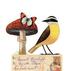 Geninne, Bird No. 28 illustation
