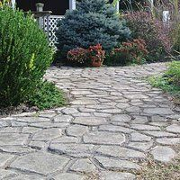 Quikrete walk maker use stain and add moss creepers for Pouring your own concrete driveway