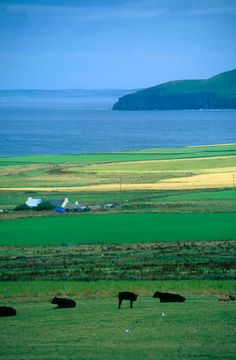 Rousay, Egilsay, Eynhallow & Wyre - Visit Orkney - Information on the Orkney Islands and places of interest