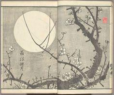 yama-bato: Baika jô = The plum blossom album. Japanese Prints, Japanese Art, Japanese Flowers, New York Public Library, Love Art, Digital Image, Illustration Art, Artist, Painting