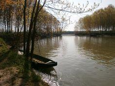 Mantova Oglio Po #Mantova #Mantua #Italia #Italy #natura #nature #fiume #river #oglio #po