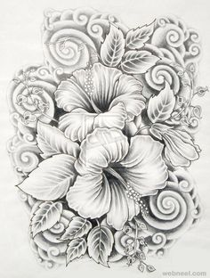 45 Beautiful Flower Drawings and Realistic Color Pencil Drawings - 14 drawings of flowers hibiscus Realistic Flower Drawing, Beautiful Flower Drawings, Drawing Flowers, Tattoo Flowers, Daisy Drawing, Pencil Drawings Of Flowers, Realistic Drawings, Flower Design Drawing, Shading Drawing
