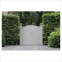 Grey wooden gate with Rhododendron 'Cunninghams White'