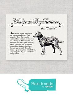 Chesapeake Bay Retriever (Chessie) Storybook Style Canvas Print: An Unframed Vintage Inspired, Rustic and Retro Wall-Art Print for Dog Lovers (Ships Free) from traciwithani http://www.amazon.com/dp/B01A6ELDWI/ref=hnd_sw_r_pi_dp_CEuNwb09YAX53 #handmadeatamazon