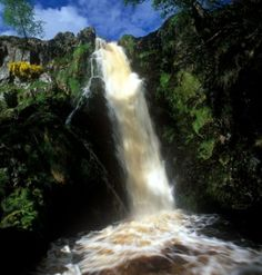 Find out more about Linhope Spout, a wild and wonderful waterfall in the north of Northumberland National Park. Northumberland National Park, North East England, Durham, Country Life, Walks, The Good Place, Cool Pictures, Scotland, Trips