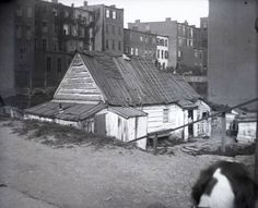 Madison Avenue and East 77th Street, New York City, May 11, 1891. Home of Blind Tim Foley, his wife, and son