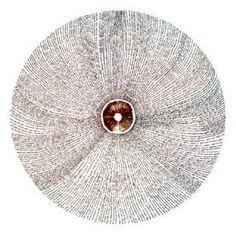 Chris Drury - Mushroom Circle Mushroom Drawing, Mushroom Art, Mushroom Circle, Chris Drury, Natural Architecture, Growth And Decay, A Level Art, T Art, Sense Of Place