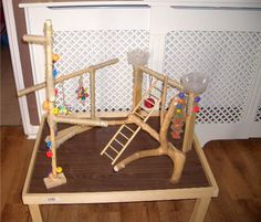 Birds Love your bird? Whether you have a parrot or parakeet, your winged companion will love this DIY bird playgym. Cockatiel Toys, Parakeet Toys, Cockatiel Cage, Hamsters, Diy Parakeet Cage, Rodents, Diy Parrot Toys, Diy Bird Toys, Bird Crafts