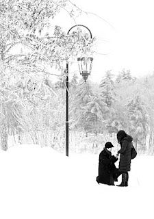black and white winter proposal