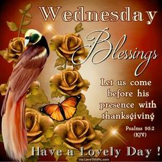 Psalms (KJV) Let us come before his presence with thanksgiving, and make a joyful noise unto him with psalms. Happy Wednesday Images, Wednesday Greetings, Wednesday Wishes, Blessed Wednesday, Good Morning Wednesday, Good Morning Happy, Good Morning Picture, Morning Pictures, Morning Images