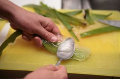 How to Make Aloe Vera Gel. Aloe vera gel is one of nature's great healers. It can be used to treat sunburn, moisturize skin and soothe irritation. To make your own, all you need is a healthy aloe plant. Aloe vera gel can be mixed with. Aloe E Vera, Diy Aloe Vera Gel, Natural Treatments, Natural Remedies, Home Remedies For Psoriasis, Bb Beauty, Homemade Beauty, Homemade Hair, Diy Hairstyles