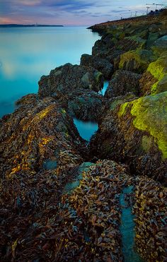 Holywood Rocks in Knocknagoney, Belfast, Northern Ireland.