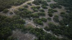 Beyond the border: the US's deadly immigration crisis | World news | The Guardian