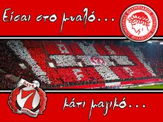 Olympiakos! Never Grow Up, Red Stripes, Growing Up, Religion, Football, Sports, Greece, Trips, Asia