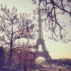 paris in the spring <3