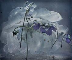 Галерея романтичной москвички SOLACE: Adrift with Flowers