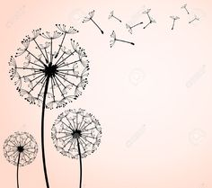 Seed Stock Photos Images, Royalty Free Seed Images And Pictures
