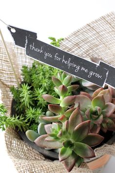 "Teacher Appreciation Free Printable ""thanks for helping me grow"""