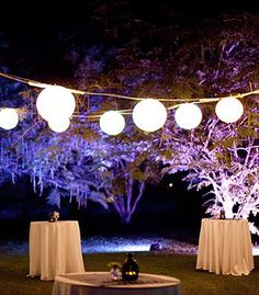 Orchard wedding reception with lanterns and uplit trees.