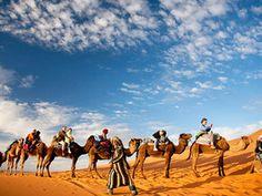 Camel Caravan : Daily Escape : Travel Channel