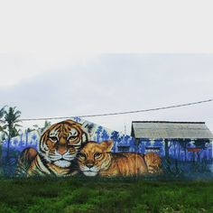 391 vind-ik-leuks, 10 reacties - WD street art - Wild Drawing (@wd_wilddrawing) op Instagram: 'Sold land#bali #streetartbali #wilddrawing #streetart #mural #graffiti #streetart #spraypaint #…'
