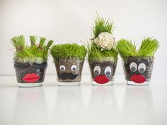 grass head pots, grass planting for kids, earth day crafts, grass planting pot, çim adam aktivitesi