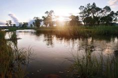 Madison Spring Creek Ranch is a historic Montana property featuring over 9 miles of incredible trout fishing: http://fayranches.com/ranches-for-sale/montana/madison-spring-creek-ranch-bozeman-mt