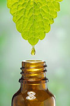 Hayley Hobson doterra essential oils