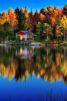 ✯ Cabin In The Woods - Autumn