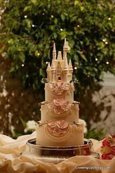 Gorgeous Fairy Tale Cinderella's Castle Disney Wedding Cake! http://www.weddingmusicproject.com/wedding-sheet-music/ http://www.weddingmusicproject.com/wedding-sheet-music/wedding-piano-sheet-music/