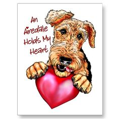 Airedale love!