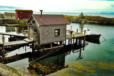 Top 16 Things to do in Lunenburg and around Lunenburg Lunenburg Nova Scotia, Stuff To Do, Things To Do, Newfoundland, Small Towns, East Coast, Canada, Landscape, Street