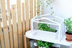 Custom DIY barrier for balcony - Balcony Design, Garden Design, Balcony Ideas, Affordable Fencing, Brande, Diy Garden Fence, Terrarium, Patio, Pins
