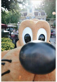 Walt Disney, Disney Day, Disney Magic, Disney Pixar, Disney Theme, Disney Characters, Disney World Pictures, Cute Disney Pictures, Disney Vacations