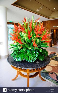 "See our website for more info on ""used cars for sale"". It is actually an excellent place to get more information. Hotel Flower Arrangements, Creative Flower Arrangements, Tropical Floral Arrangements, Beautiful Flower Arrangements, Tropical Flowers, Ikebana, Hotel Flowers, Corporate Flowers, Deco Floral"
