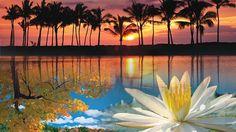 16x9_worlds-most-beautiful-places.jpg 590×332 pixels