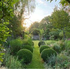 Pebble Garden, Garden Pool, Green Garden, Garden Plants, Garden Landscaping, Roses Garden, Interior Garden, English Countryside, Back Gardens