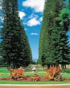 Four Seasons Resort Lanai, The Lodge at Koele, Lanai