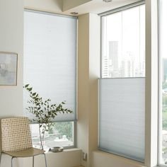 Unique Allen and Roth Blinds