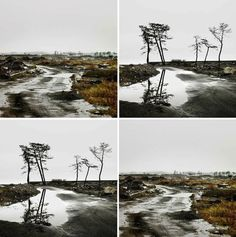 Si le destin a soufflé sur Fukushima, une aspiration divine souffle à nouveau sur la ville, le vent... - http://www.blog-habitat-durable.com/si-le-destin-a-souffle-sur-fukushima-une-aspiration-divine-souffle-a-nouveau-sur-la-ville-le-vent/